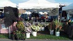 Ocean City Farmers' Mkt